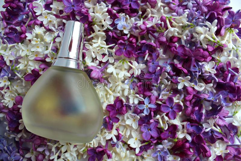 A bottle of perfume on a lilac background stock photos