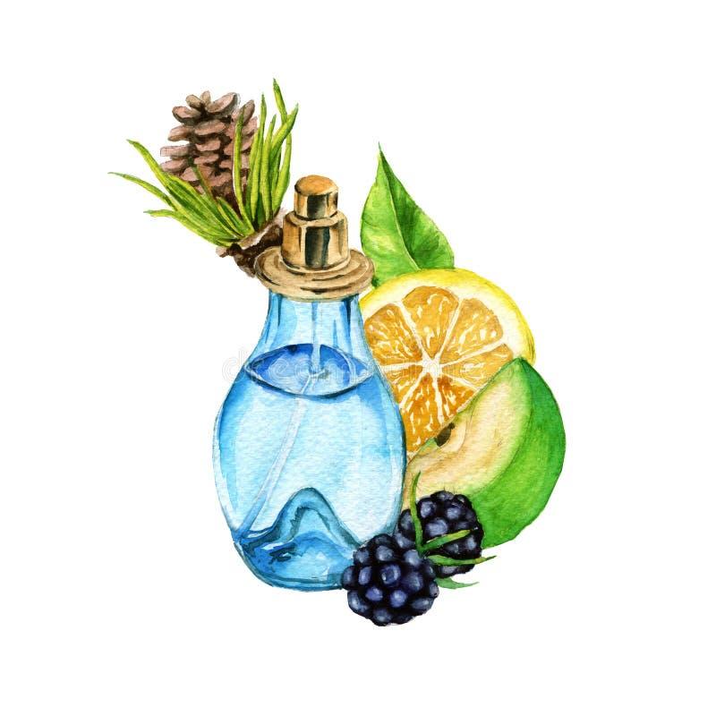 Perfume para mulheres Aroma de agulhas do pinho, de limão, da maçã verde e da amora-preta ilustração do vetor
