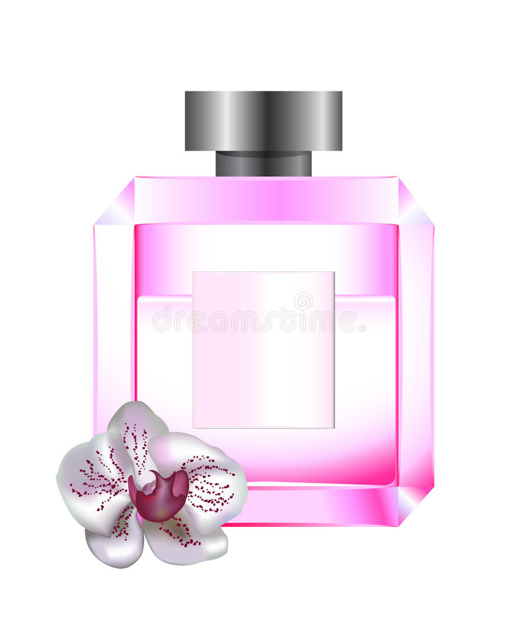 Download Perfume with white orchid stock vector. Image of flavour - 19945287