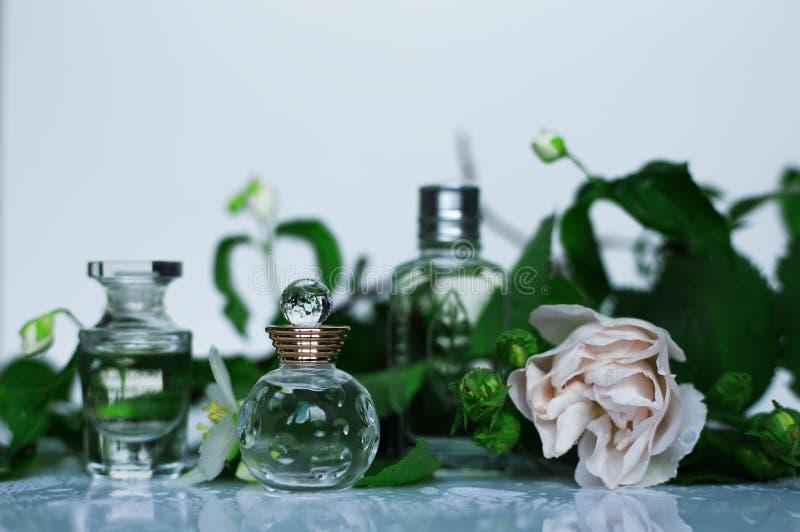 Perfumería, cosméticos, colección de la fragancia imágenes de archivo libres de regalías