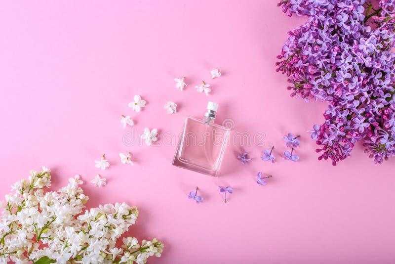 perfumer?a y concepto floral del olor ?ottle del perfume en centro con las flores del llilac en fondo rosado Endecha plana de mod foto de archivo