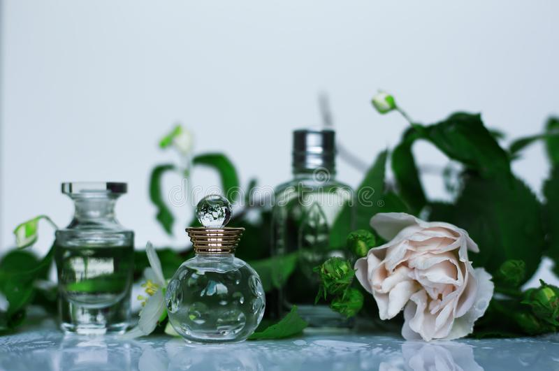 Perfumery, cosmetics, fragrance collection royalty free stock images