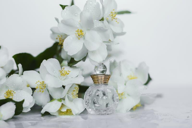 Perfumery stock photography