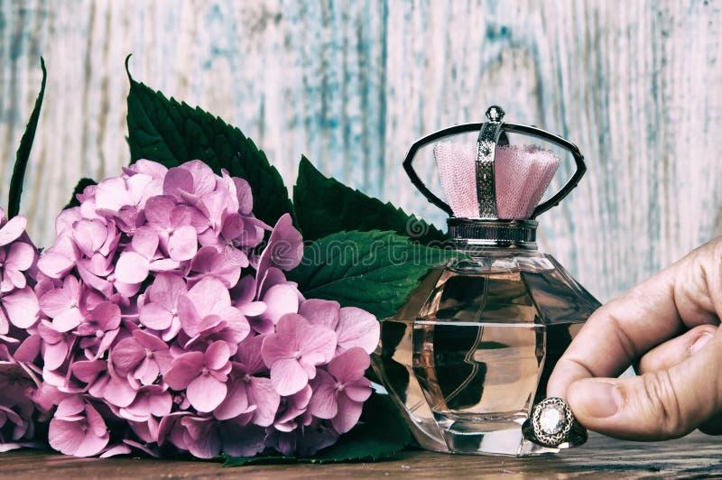 Perfumes e hortênsia em um fundo de madeira azul fotos de stock