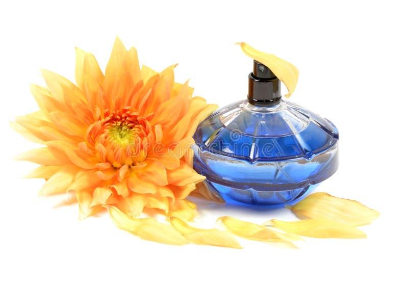 perfumy obraz stock