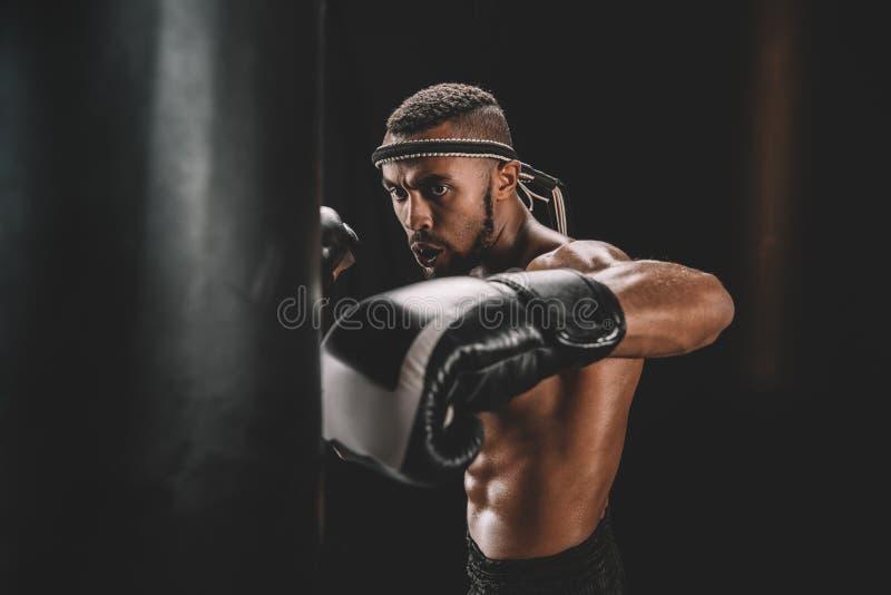 Perfurador praticando tailandês muay focalizado do lutador no saco de perfuração fotografia de stock royalty free