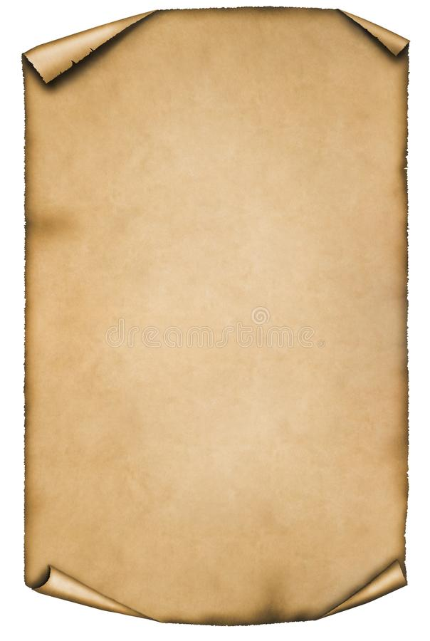Pergamena d'annata o rotolo isolato su fondo bianco illustrazione vettoriale
