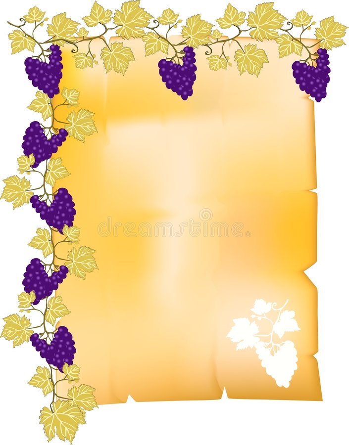 Pergaminho com beira da uva ilustração royalty free