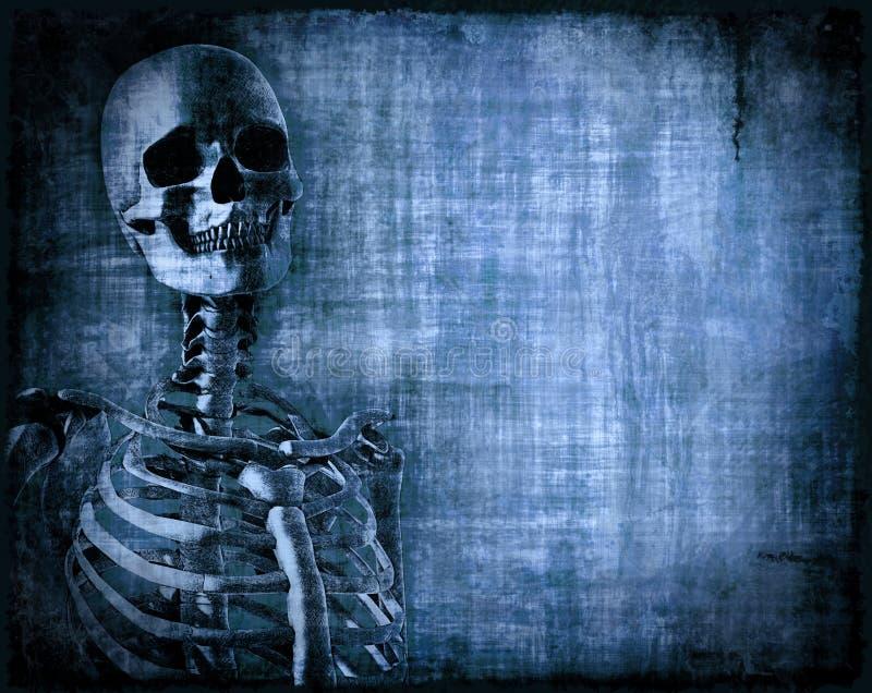 Pergaminho de esqueleto ilustração do vetor