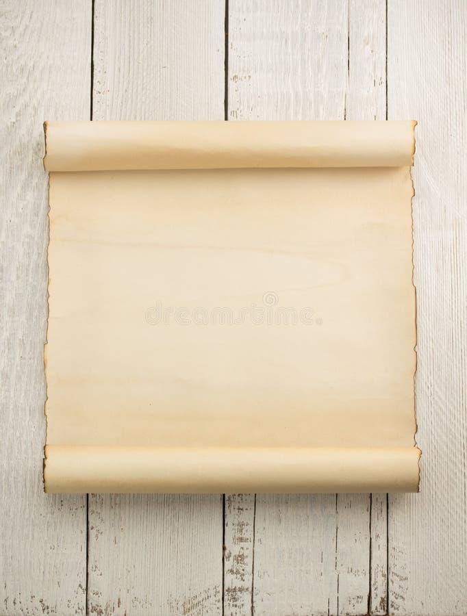 Pergaminowa ślimacznica na drewnie obraz royalty free
