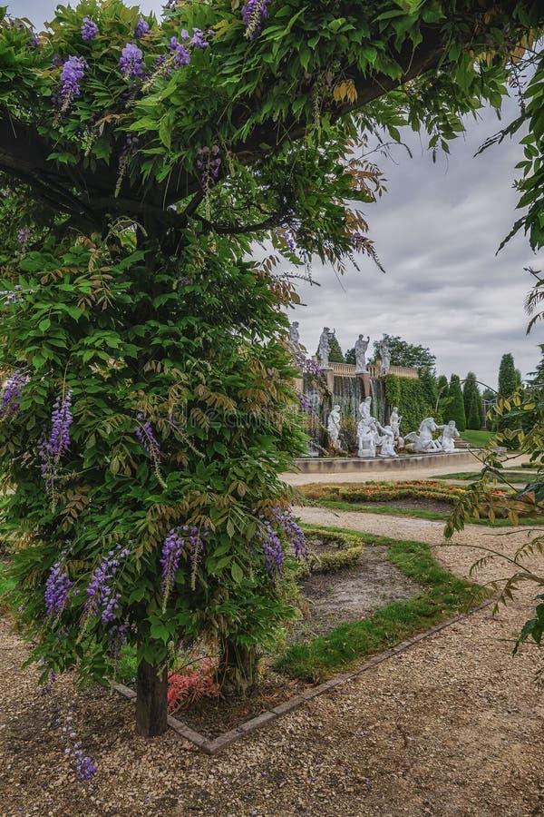 Pergola überwucherte Zierpflanze und Ansichten des Brunnens stockfotos
