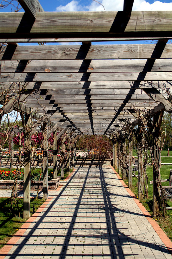 Download Pergola stock photo. Image of walkway, roof, climbing - 2493368