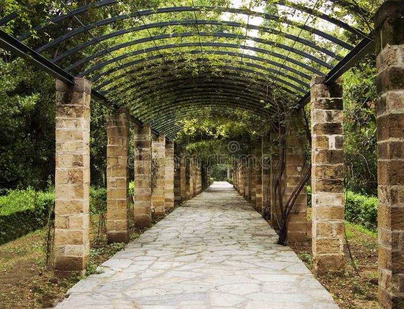 Pergola in Athen, Griechenland stockfotografie