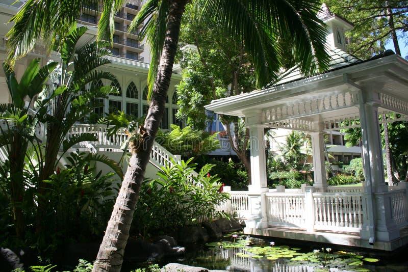 Pergola bei Hawiiian Hilton lizenzfreies stockbild