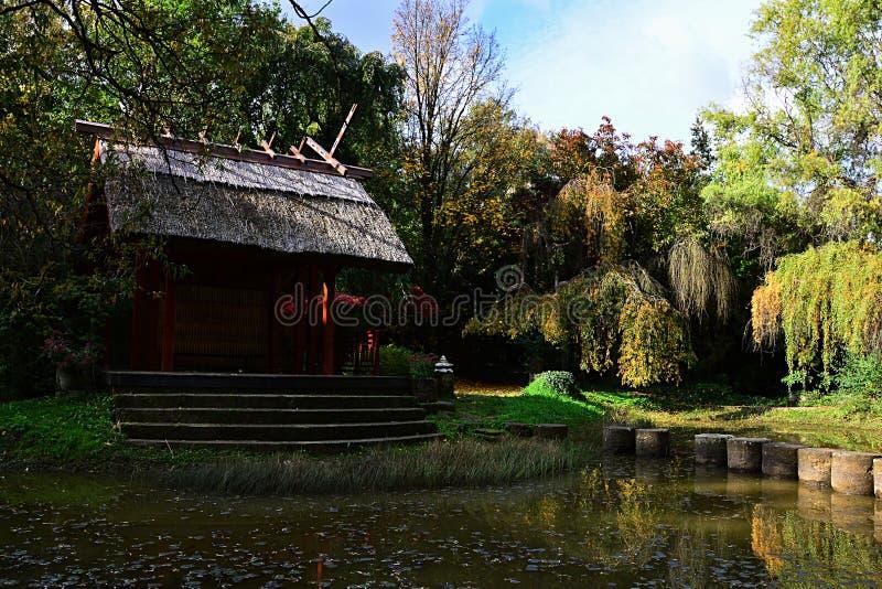 Pergola de jardin, étang avec des piliers, entourés par des cerisiers et des saules dans le pavillon japonais images stock