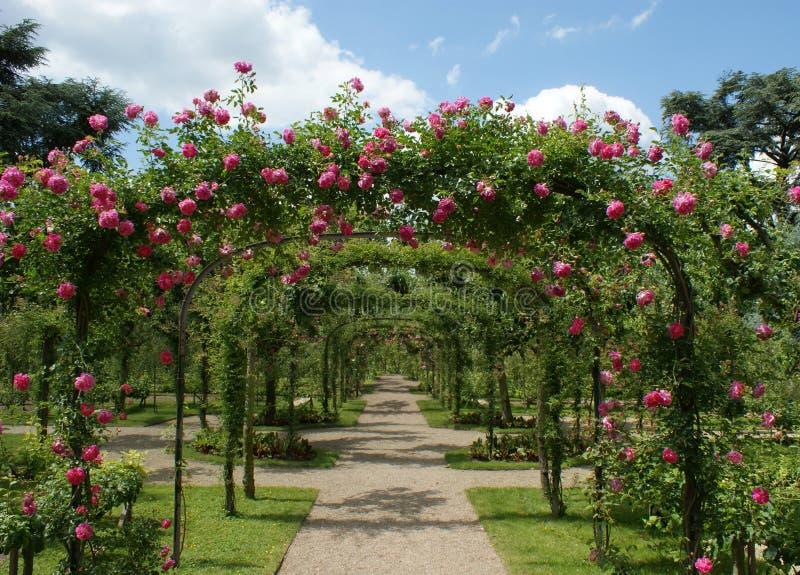 Pergola in einem französischen Garten stockfoto