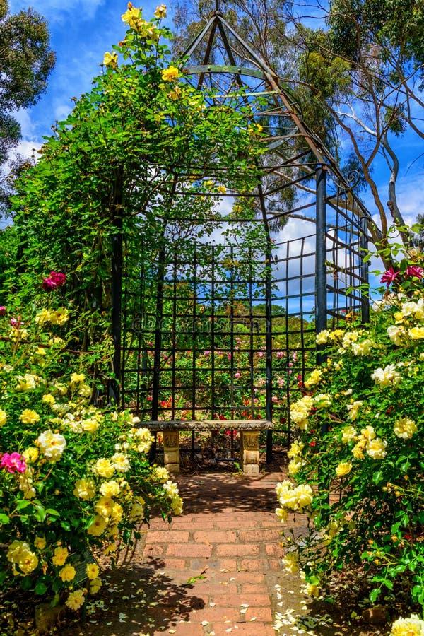 Pergola i kamienna ławka w ogrodzie różanym fotografia stock