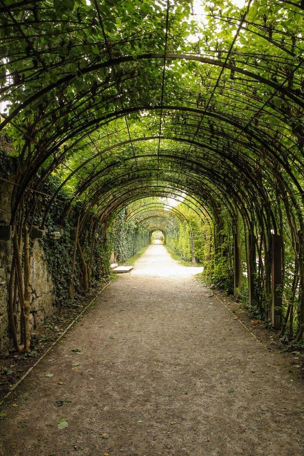 Pergola i parkera Mirabell slott Salzburg _ arkivfoto
