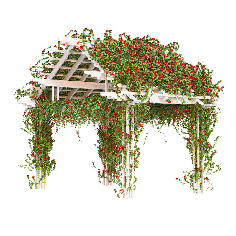 pergola mit pergola der roten rosen stock abbildung illustration von zaun gartenbau 58748074. Black Bedroom Furniture Sets. Home Design Ideas