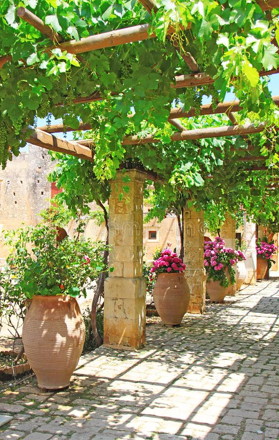 Free Pergola Of Grapes In The Patio Greece Crete Stock Images - 116399934
