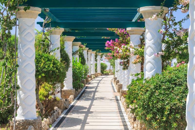 pergola Sources Kallithea (Terme Kalithea) Île de Rhodes photo libre de droits