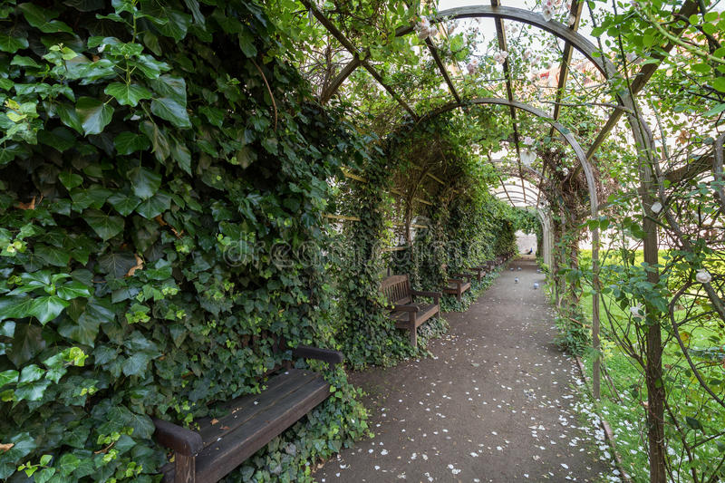 Pergola at the Vojan Gardens in Prague royalty free stock photography