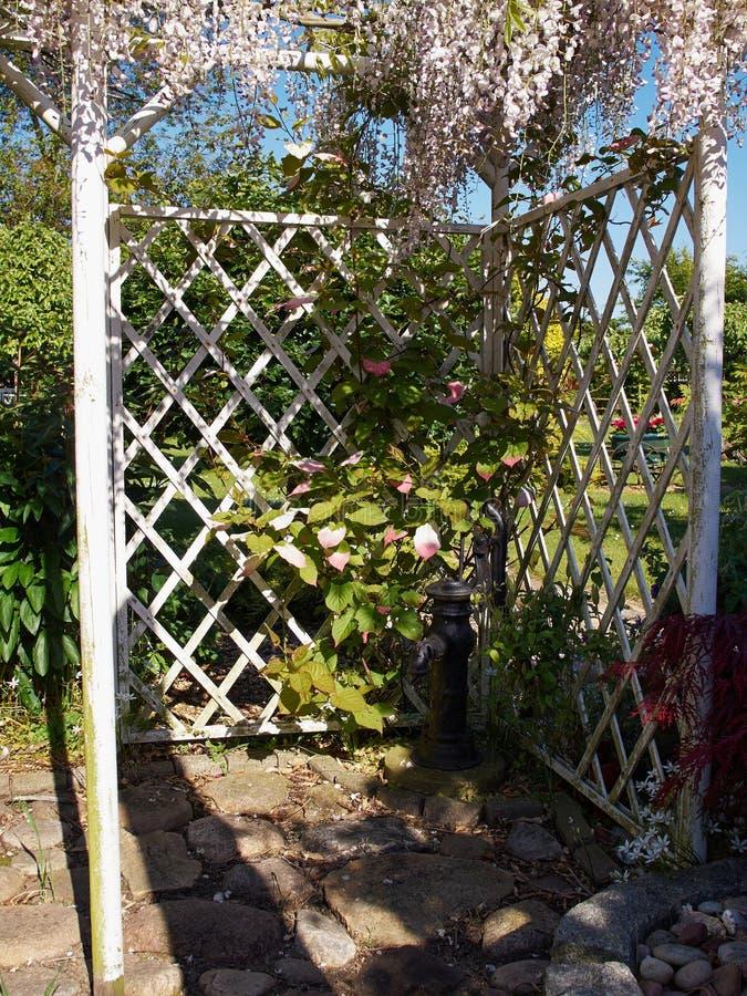 Pergolagazebo i en härlig trädgård royaltyfria foton