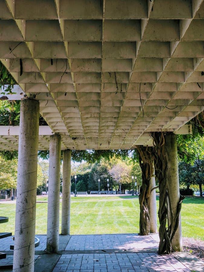 Pergoli drzewa i filary fotografia stock