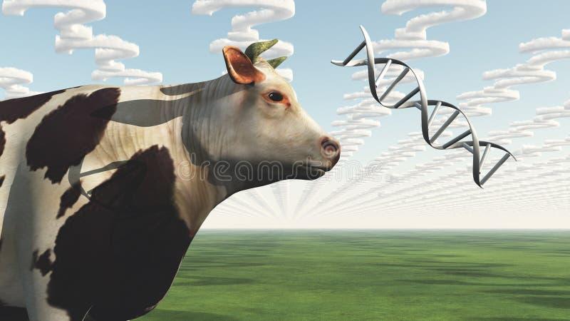 Pergunta da vaca de GMO ilustração do vetor