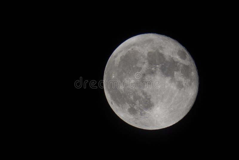 Perigeo della luna immagine stock