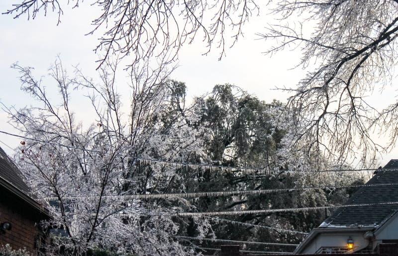 Perigo da eletricidade perdedora - sincelos nas linhas elétricas e ramos de árvore entre duas casas durante uma tempestade de gel imagem de stock