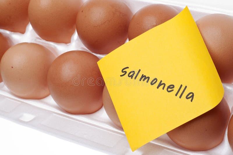 Perigo das salmonelas imagens de stock royalty free