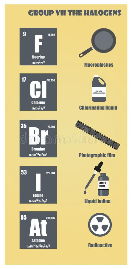Category Education  >> Periodic Table Of Element Group Vii The Halogens Stock Illustration