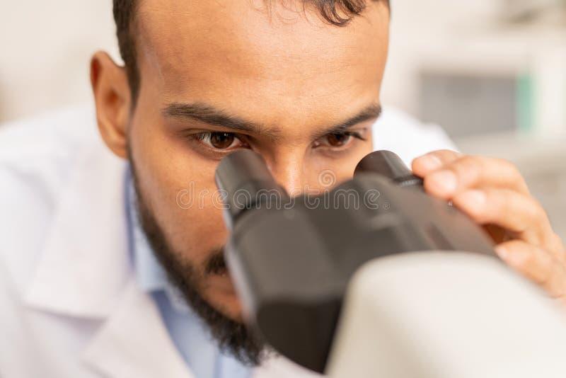 Perito do laboratório que olha no microscópio fotos de stock royalty free