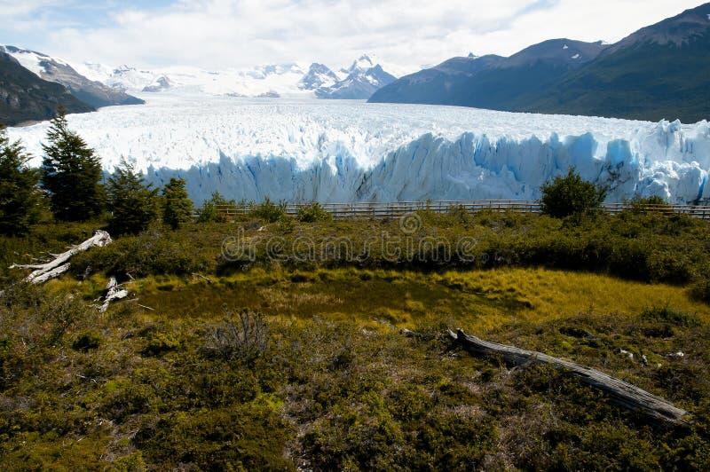 Perito Moreno Glacier - EL Calafate - la Argentina fotos de archivo