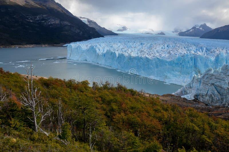 Perito Moreno Glacier i nationalpark för Los Glaciares i El Calafate, Argentina, Sydamerika arkivbilder