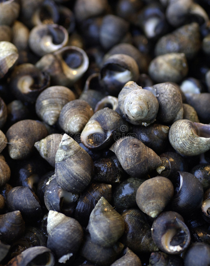 Periwinkles at the market stock photos