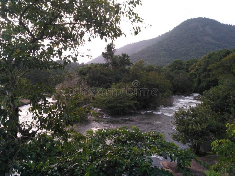 periyar rzeka zdjęcia royalty free