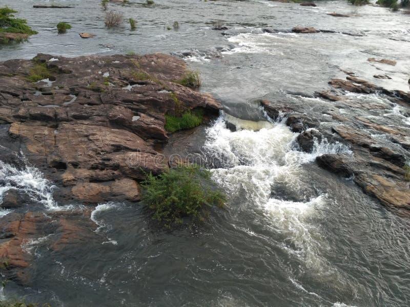 periyar rzeka obraz stock