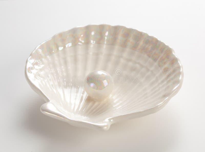 Perla blanca en el shell foto de archivo libre de regalías
