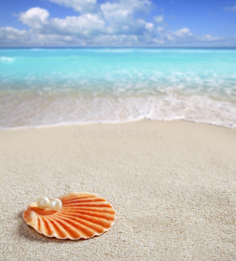 Perla caraibica sulla spiaggia bianca della sabbia delle coperture tropicale fotografia stock