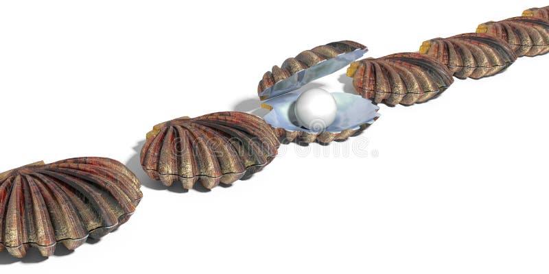 Perla en la fila de la cáscara de ostra de cáscaras ilustración del vector