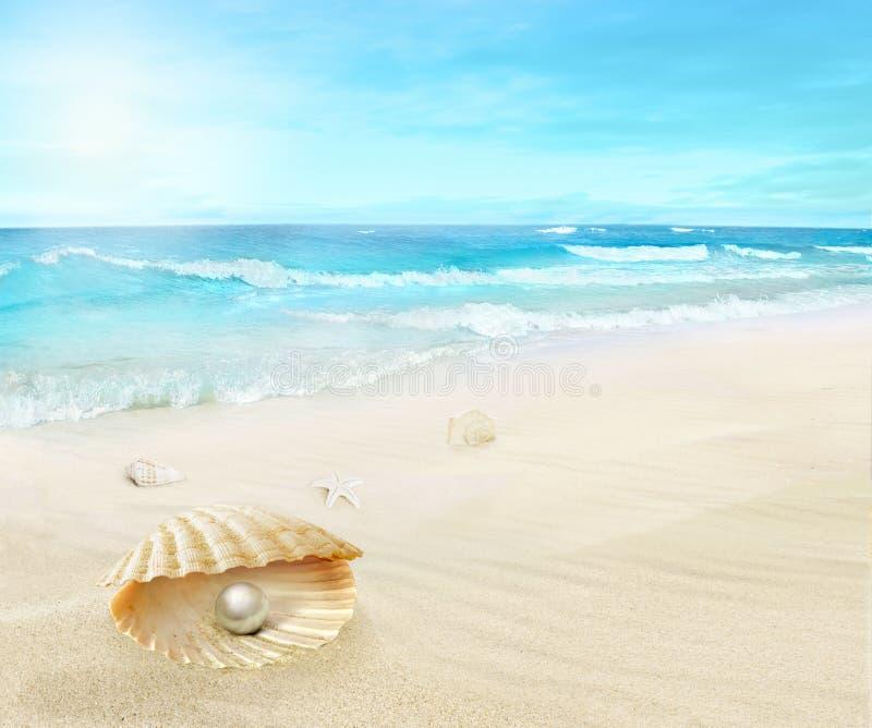 Perla en la playa imagenes de archivo