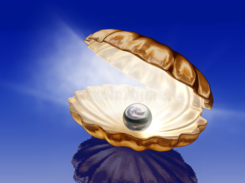 Perla en seashells abiertos stock de ilustración