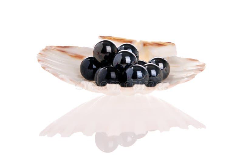 Perlas negras imágenes de archivo libres de regalías