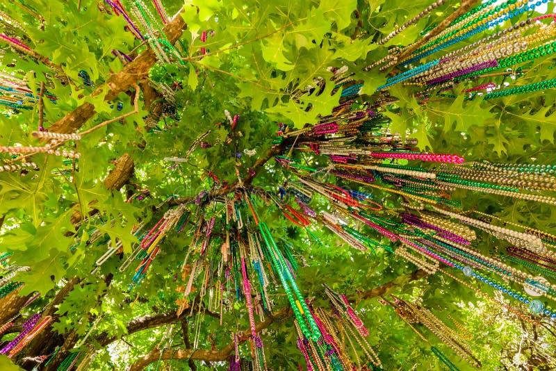 Perle di Mardi Gras fotografie stock