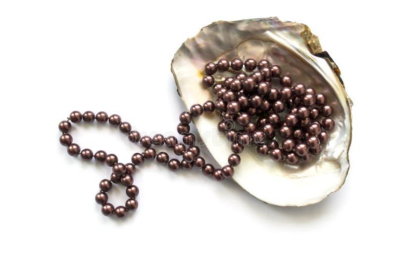Perle in einem Seashell lizenzfreie stockbilder