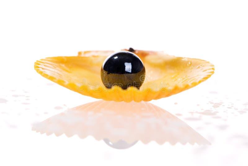 Perle noire photos stock
