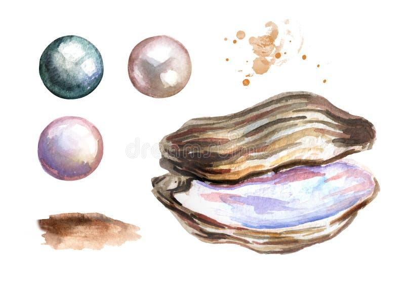 Perles et ensemble de coquille Illustration tirée par la main d'aquarelle sur le fond blanc illustration de vecteur