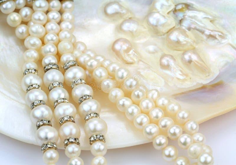 Perlez le collier avec les perles naturelles dans une coquille d'huître images stock
